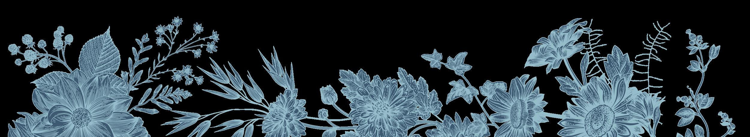 Illustrated floral banner.
